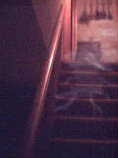 stairwayghost3.jpg